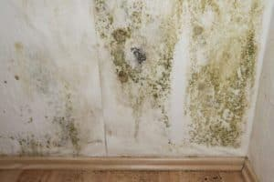 Indoor Air Quality Testing Raleigh
